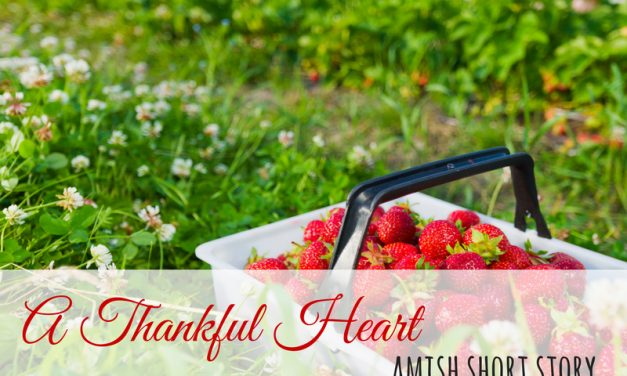 Amish Short Story – A Thankful Heart