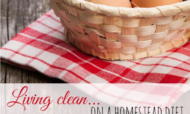 Living Clean on a Homestead Diet