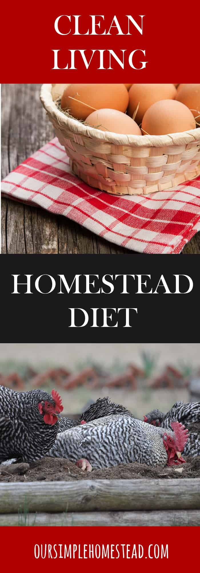 Living Clean - A Homestead Diet