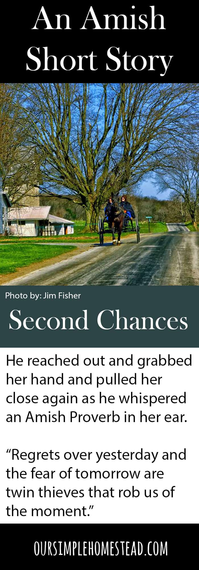 Second Chances An Amish Short Story