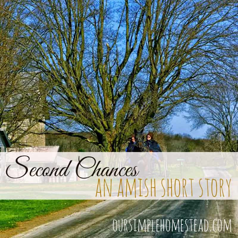 Second Chances - An AMmish Short Story