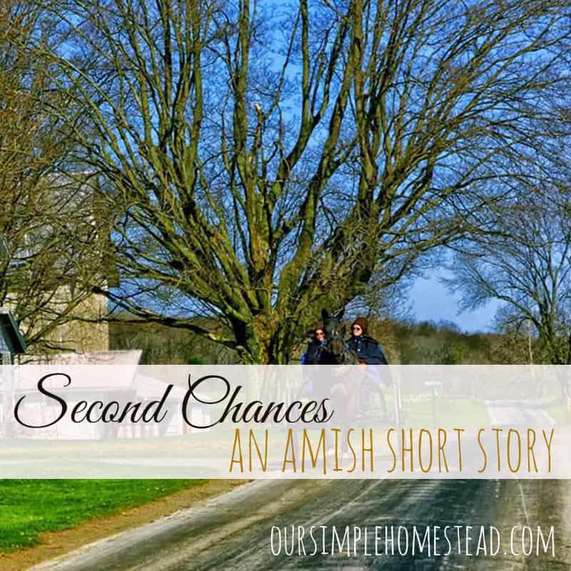 Second Chances - An AMmish Short Story
