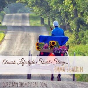 Amish Lifestyle Short Story - Emma's Garden