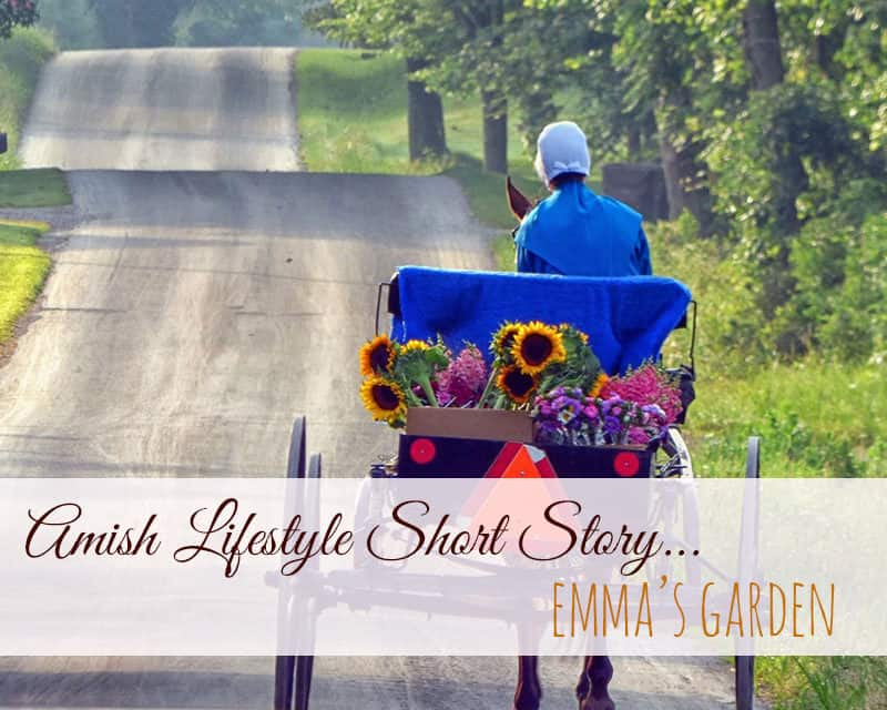 Amish Lifestyle Short Story – Emma's Garden
