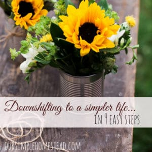 Downshifting to a Simple Life