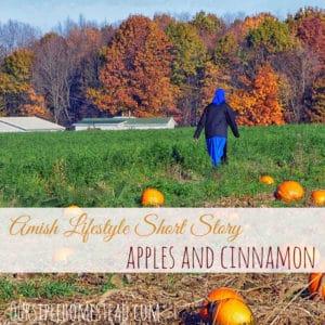 Amish Lifestyle Short Story