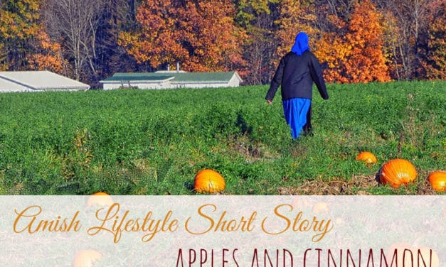Amish Lifestyle Short Story – Change of the Season