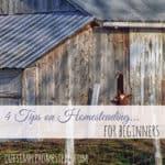 4 Tips on Homesteading for Beginners
